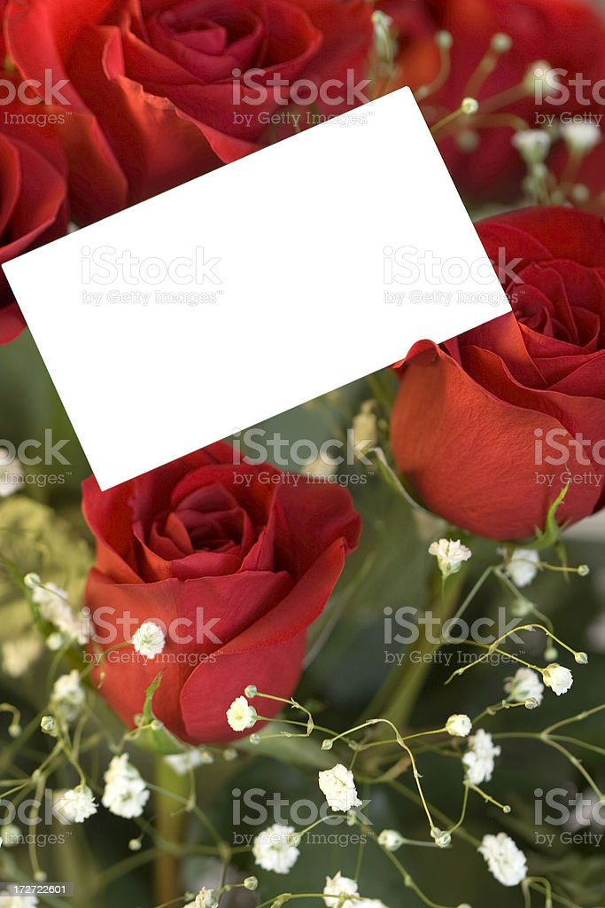 Love and Roses stock photo