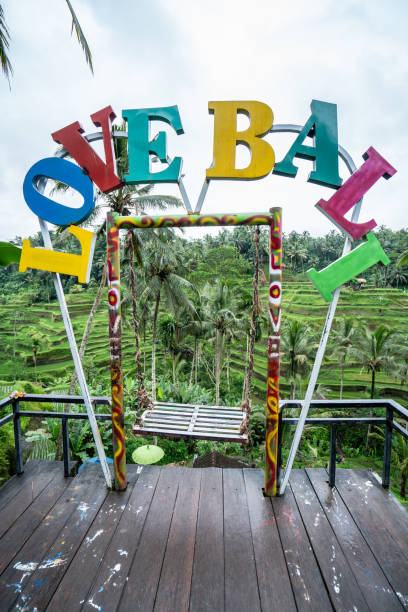 Ich liebe Bali Schild über Reisterrassen – Foto