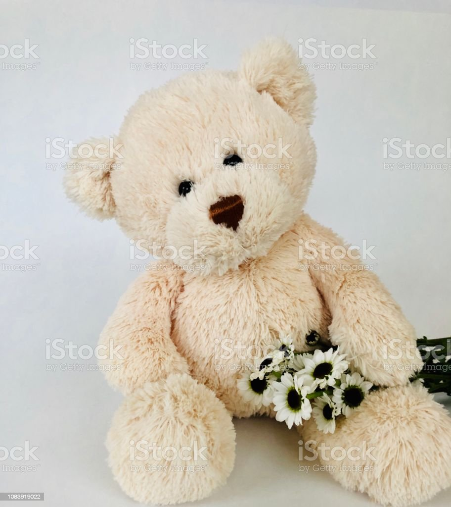Love Bear stock photo