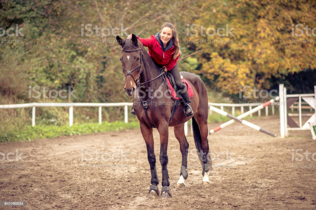 Love between human and horse stock photo