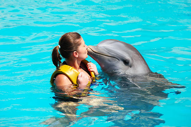 I love dolphins! A picture of a young woman kissing a dolphin in a turquise water dolphin stock pictures, royalty-free photos & images
