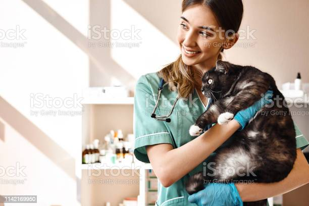 Love each of my patients smiling female vet holding a big black cat picture id1142169950?b=1&k=6&m=1142169950&s=612x612&h=wl4znhdlscj1cb 0p iqkvgblegafrhxofieytlcgyi=