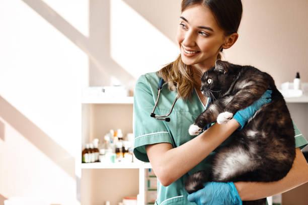 Love each of my patients smiling female vet holding a big black cat picture id1142169950?b=1&k=6&m=1142169950&s=612x612&w=0&h=tdmuax 7qdprpoynr0 a6b9bry2x271 a3iqumc48fs=