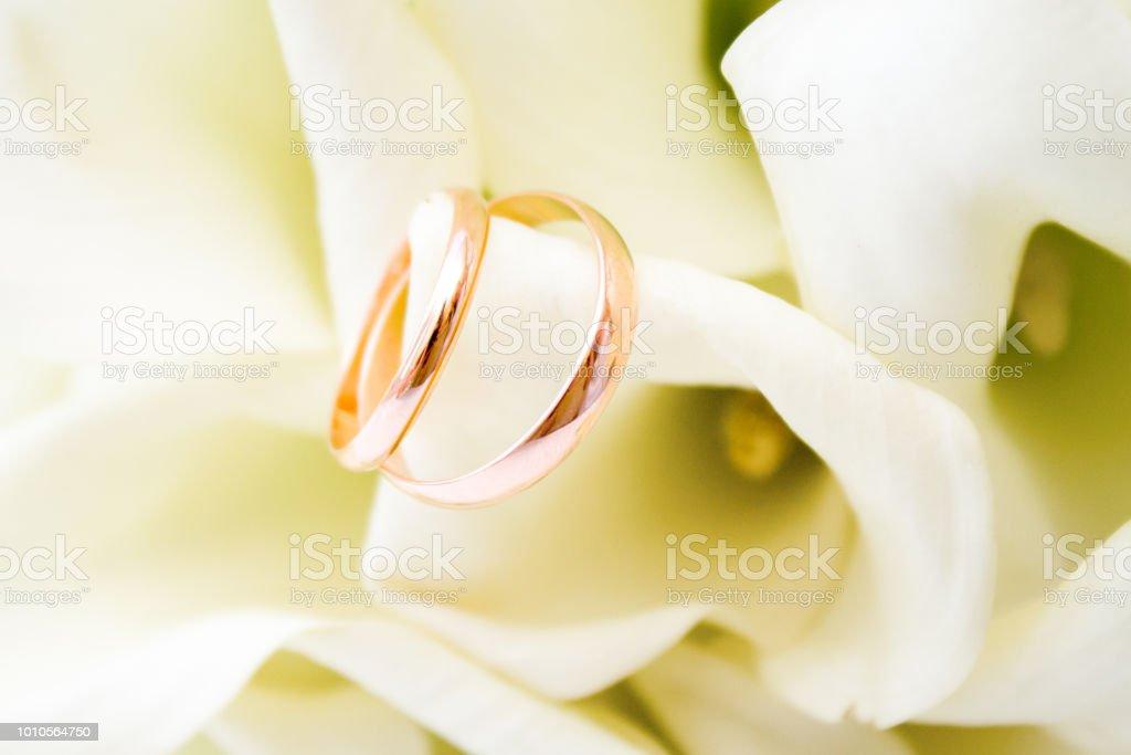 Liebe Familie Feier Zeremoniekonzepthochzeit Symbole Zwei Goldene