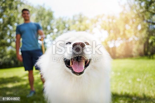 Shot of handsome young man walking his dog in the park
