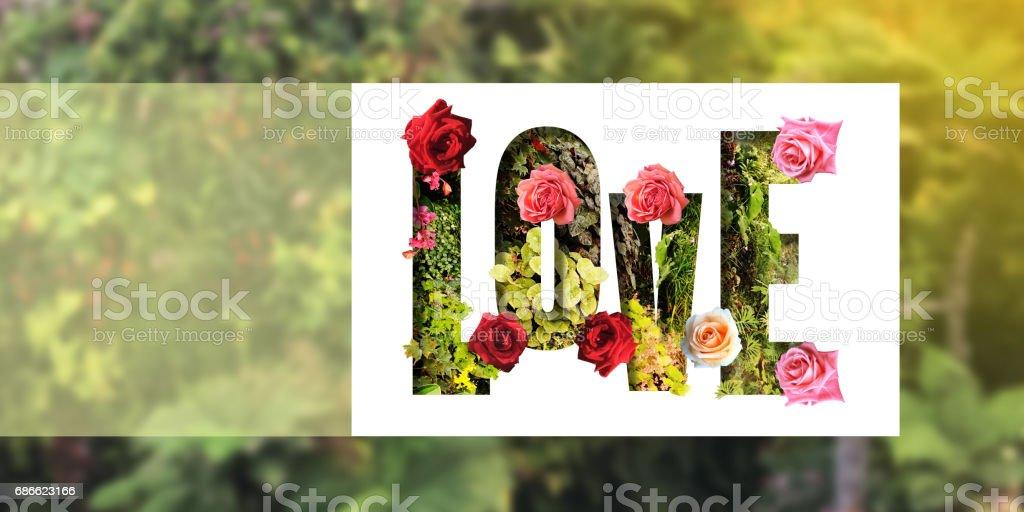 Love green ... Love nature. royalty-free stock photo
