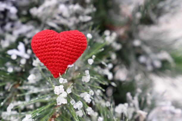 liebe herz und frohe weihnachten gestrickt rot symbol im schnee auf den tannenzweigen - weihnachtsspende stock-fotos und bilder