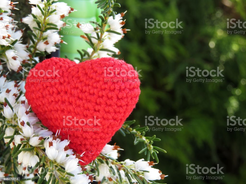 Love Heart And White Heather Flowers Romantic Background With Free
