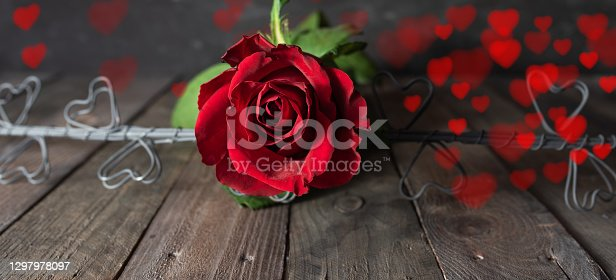 Red Roses with blurred floating hearts on dark vintage background. Romantic concept with short depth of field for valentines day and mothers day. Space for text.