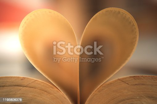 503130452 istock photo Love. Heart-shaped folded books 1195808378