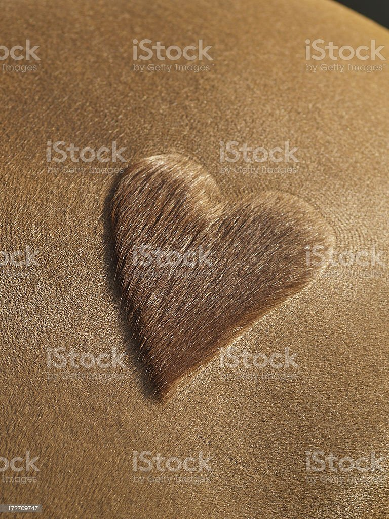 Heart shaved into the flank of a horse