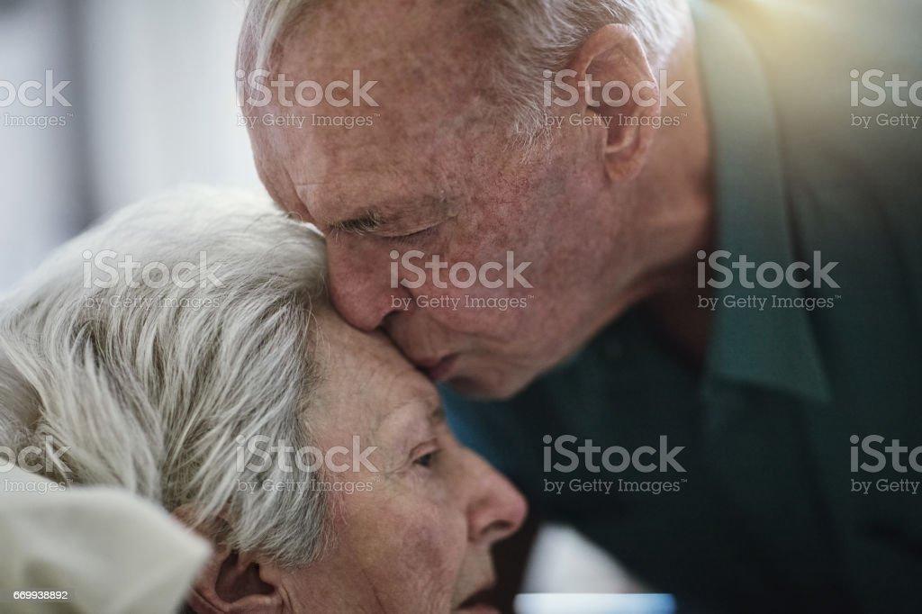 Ewige Liebe ist – Foto