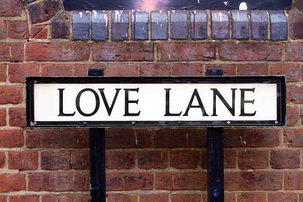 love lane straßenschild - straßenschild stock-fotos und bilder