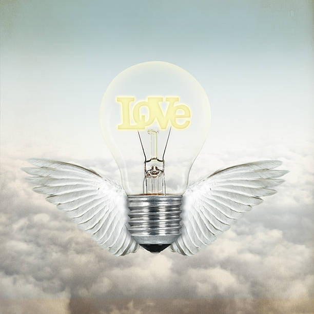 love light bulb with wings stock photo