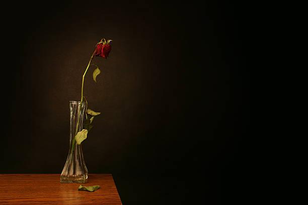 Verlorene Liebe – Foto