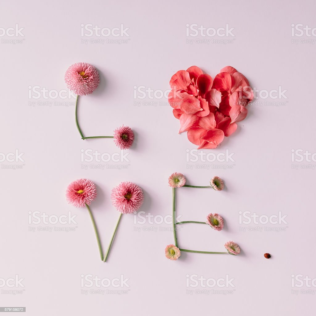'Love' made of flowers and petals on white background. – Foto