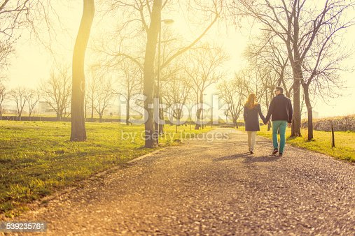 Mid adult couple holding hands and walking at park