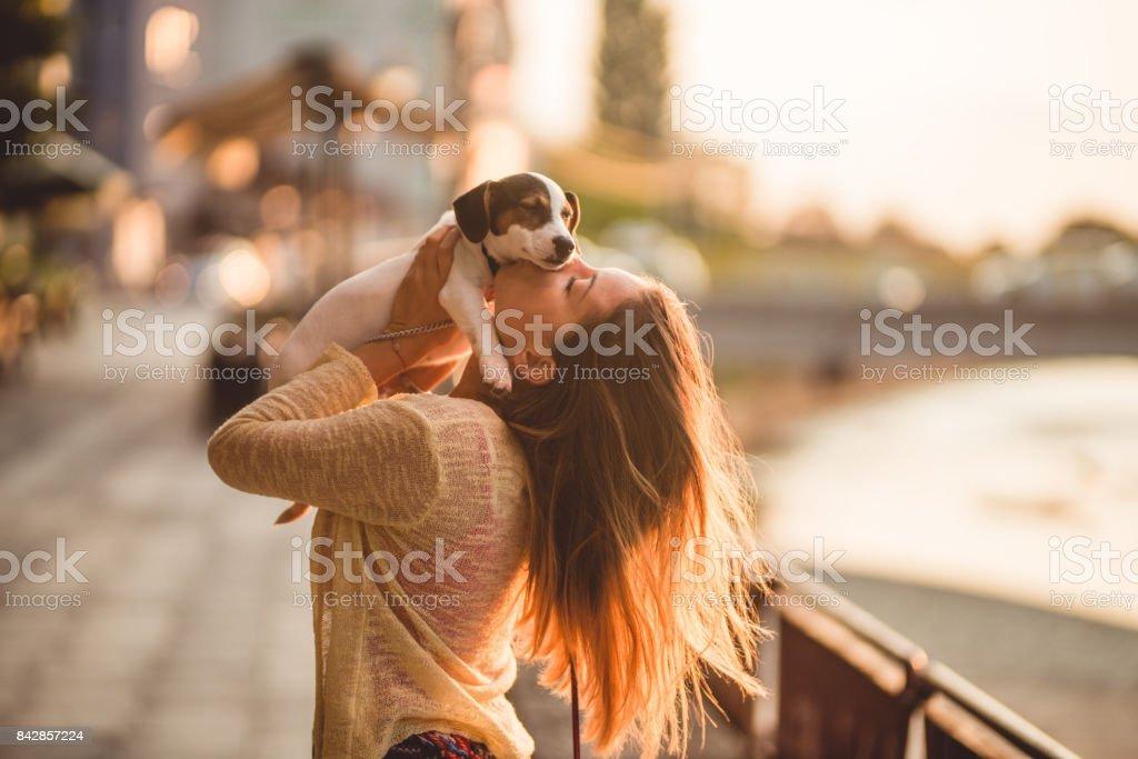 Love my cute little dog stock photo