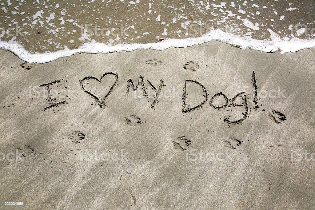 I love my dog stock photo