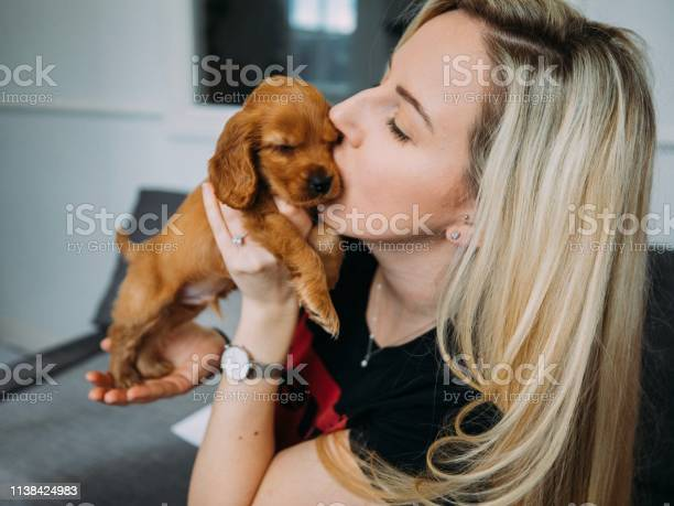 Love my new puppy picture id1138424983?b=1&k=6&m=1138424983&s=612x612&h=yszbgze40f2puywebnzptce0bj q0wuwbogfyspj7t4=