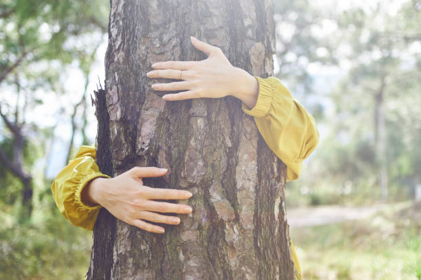 I Love Nature Huging a tree tree hugging stock pictures, royalty-free photos & images