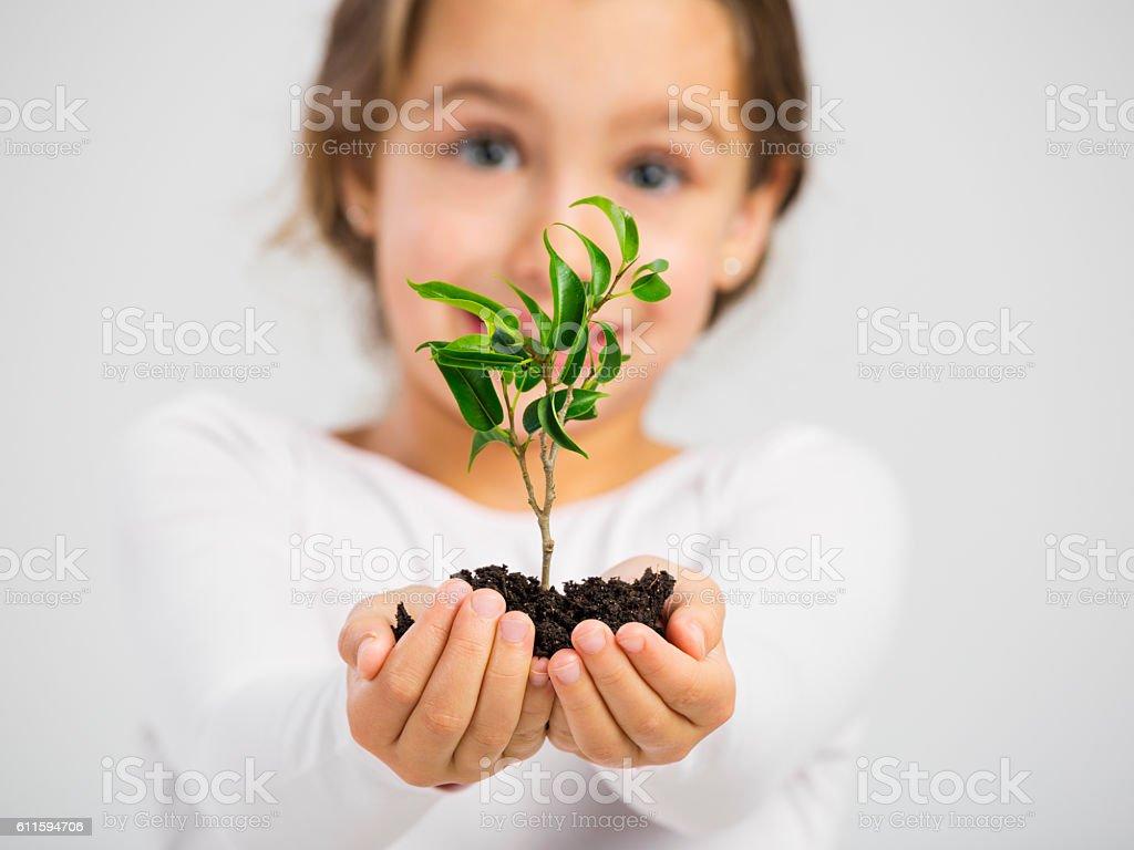 Love Nature stock photo