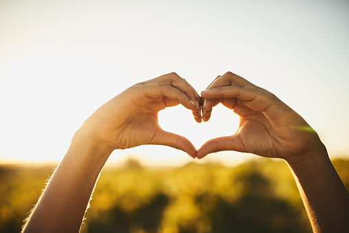 Unrecognizable shot of two hands making a heart shape and with vegetation in the background
