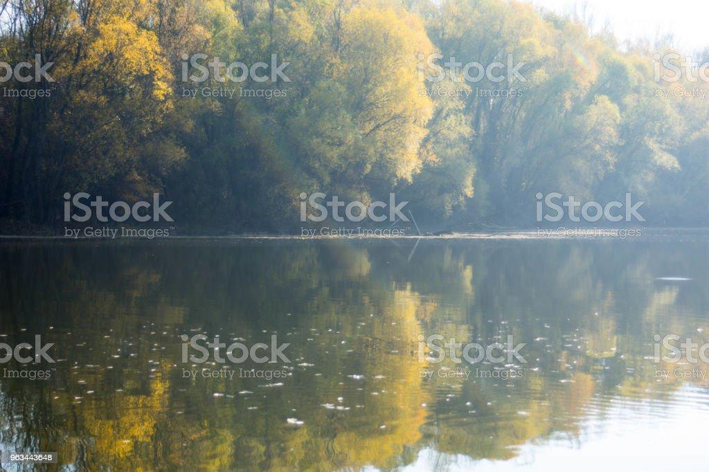 Doğayı seviyor - Royalty-free Aşk Stok görsel