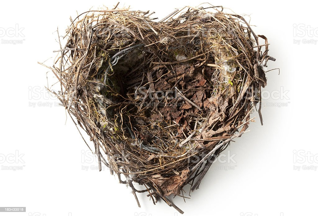 Love nest stock photo