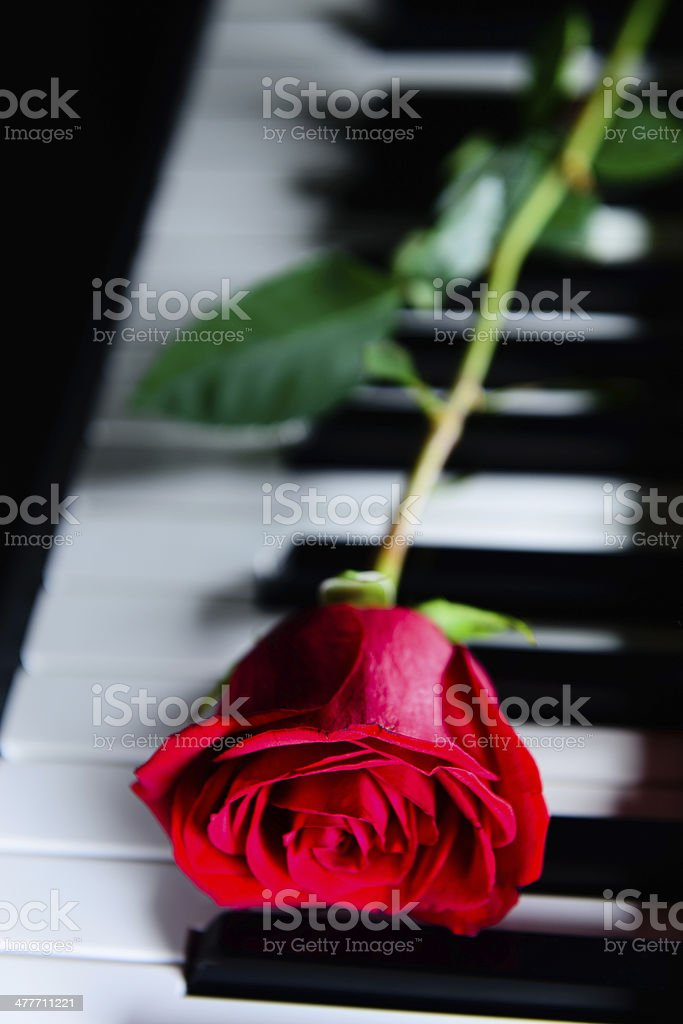 Love of Music royalty-free stock photo
