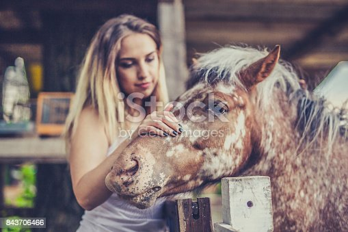 The girl enjoys stroking her horse over the fence