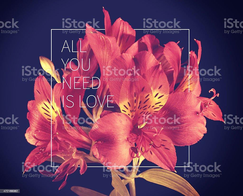 Photo Libre De Droit De Citation De Fleurs Amour Vintage