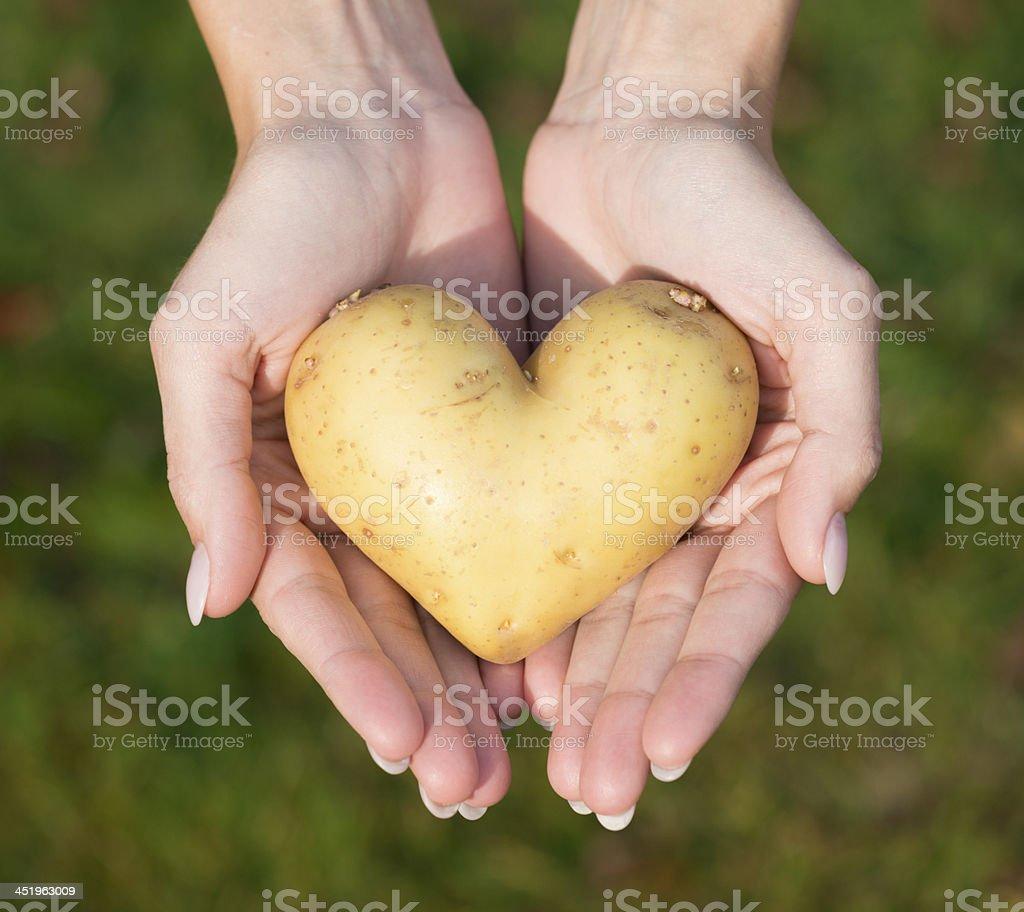 I Love Raw Foods, Heart Potato stock photo