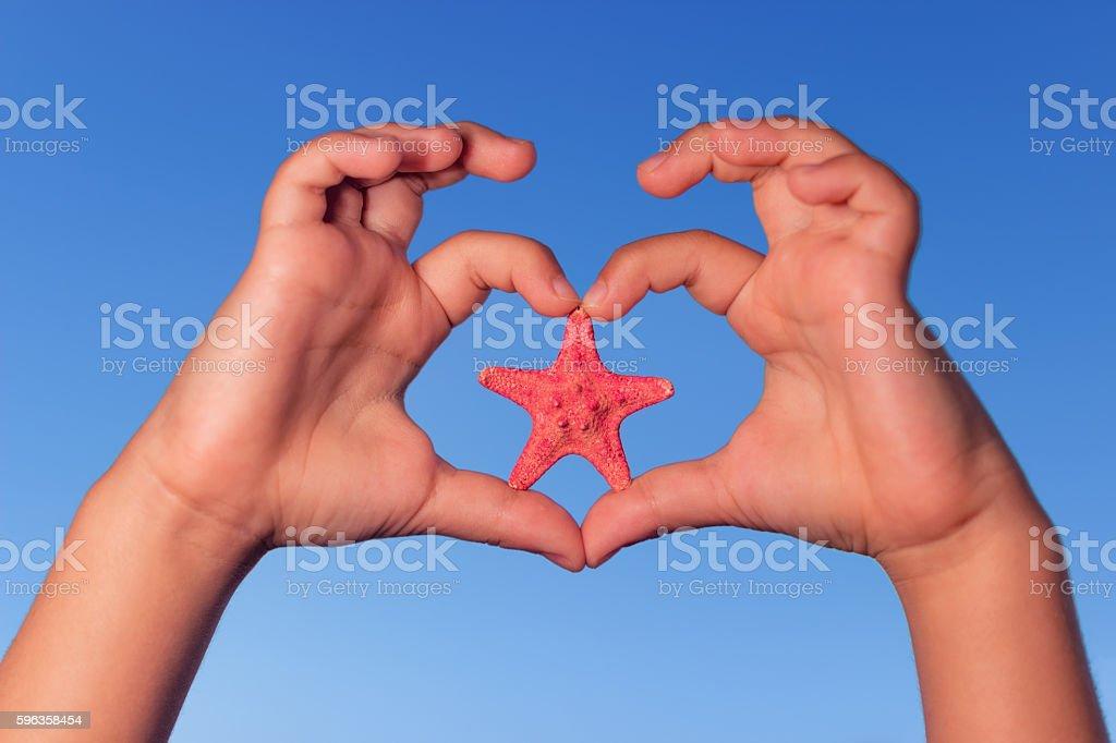 Love shape child hands with starfish. Summer background. - foto de acervo