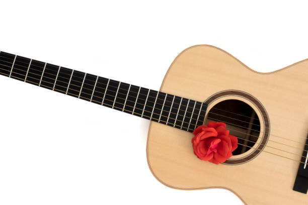 Love song. Acoustic guitar with red rose. Romantic music concept image Love song. Acoustic guitar with red rose. Romantic music concept image. Folk guitar with flower on white background copy-space. Romance and serenade. serenading stock pictures, royalty-free photos & images