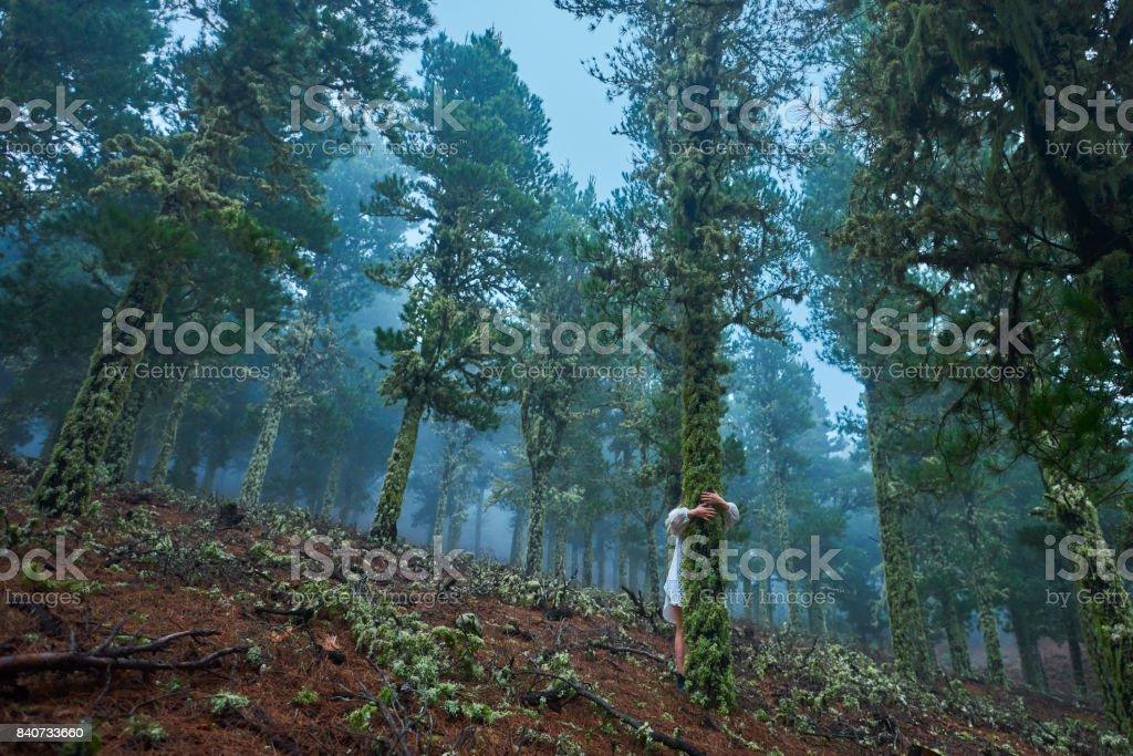 Liebe die Natur, den Baum umarmen – Foto