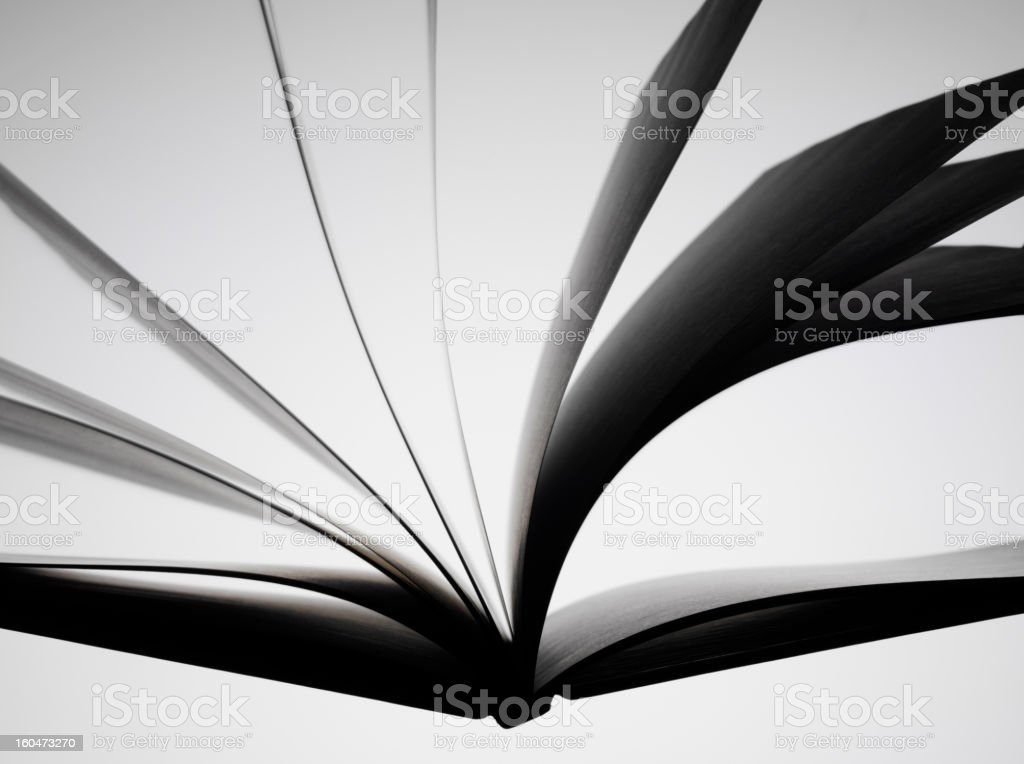 Love to Read a Book royalty-free stock photo
