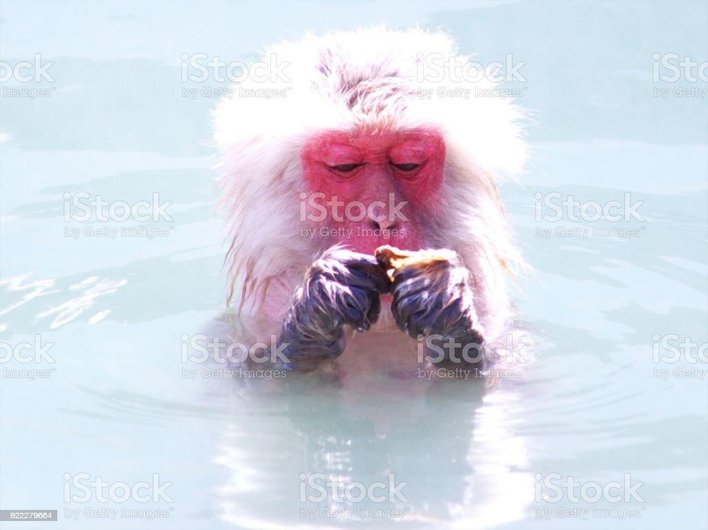 I love warm hot springs
