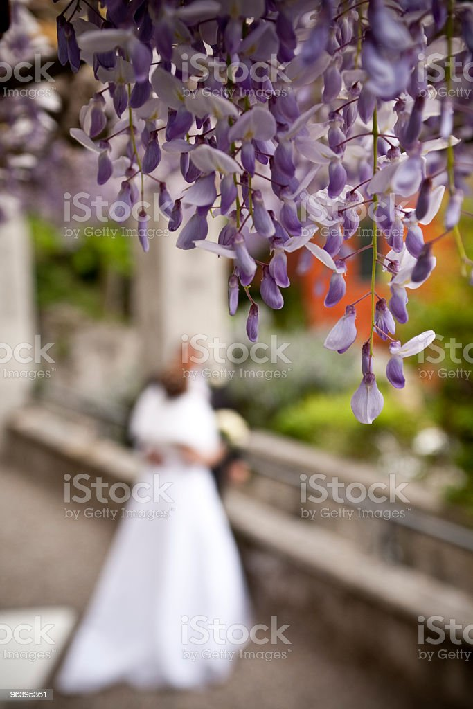 Love Wedding Moments Couple Married Bride And Groom - Royalty-free Adult Stock Photo