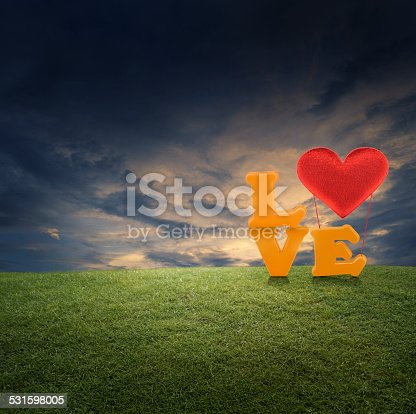 500536143istockphoto Love word with heart ballon on green grass in park 531598005