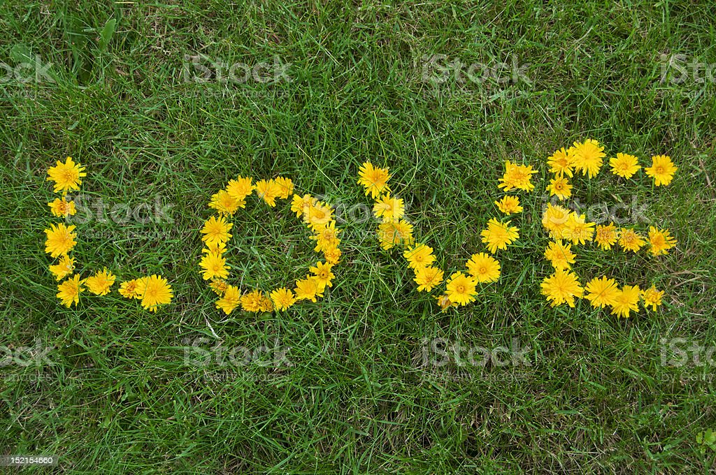 Love written with Flowers in the Grass stock photo