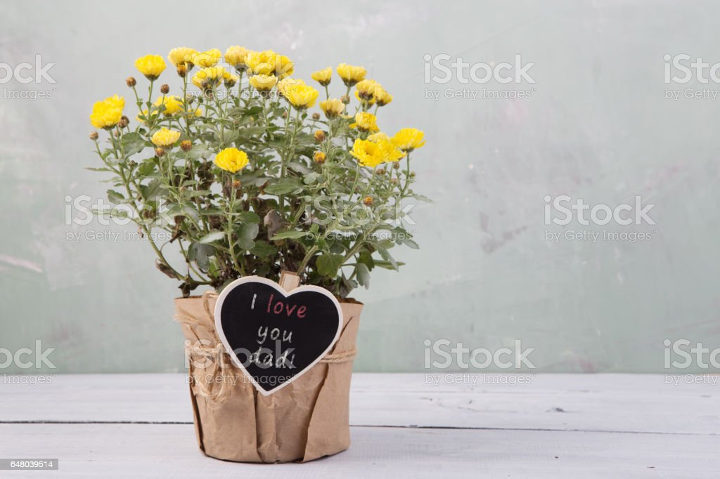 I love you dad! - beautiful  flowers in pot with message card stock photo