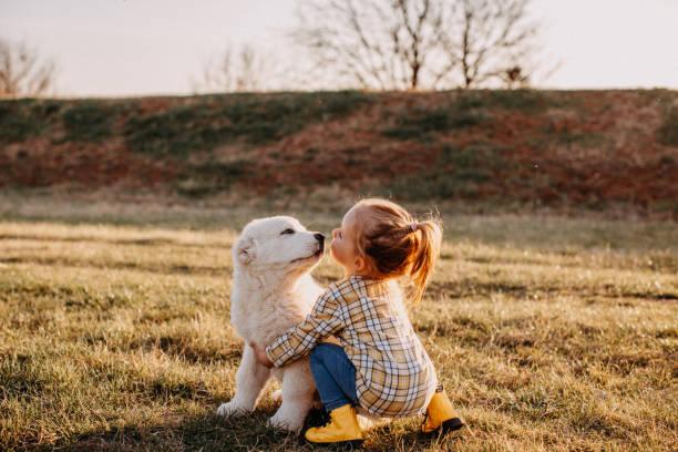 당신을 사랑해요 - 개과 뉴스 사진 이미지