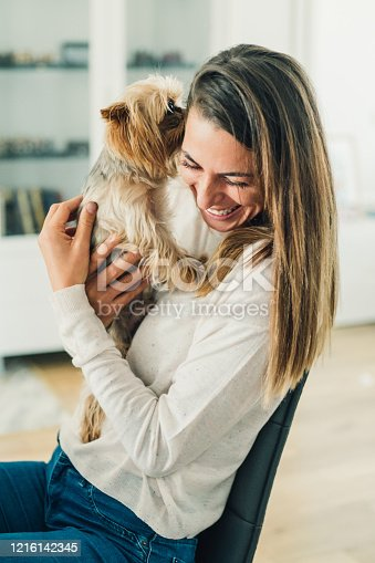 Beautiful smiling young woman embracing her cute Yorkshire terrier at home. A cute little dog kisses his owner.
