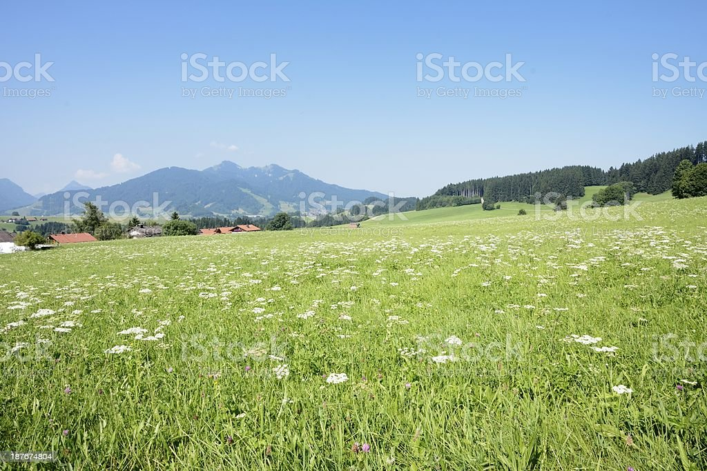 Lovely Allgaeu stock photo