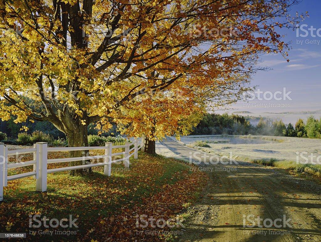 Land Schotterstrecke mit Herbst Laub In Vermont – Foto