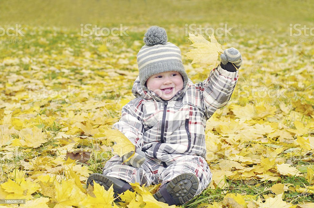lovely baby outdoors in autumn plays with leaves royalty-free stock photo