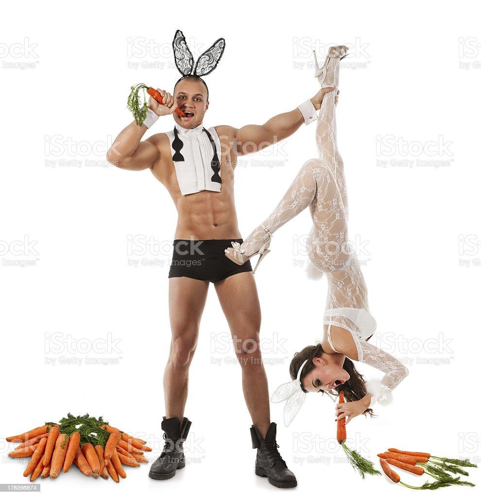 Lovely bunny couple stock photo