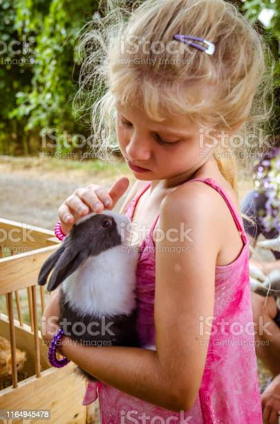 Lovely child holding a rabbit pet picture id1164945478?b=1&k=6&m=1164945478&s=612x612&h=3ztskvcnly q9wonepjojz5nyjzqwdhfajlykzoo2ee=
