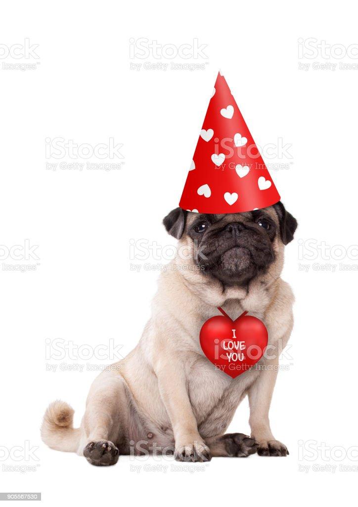 mooie schattige Valentijnsdag puppy pug dog zitten met rood ik hou van je hart en feest hoed met harten foto
